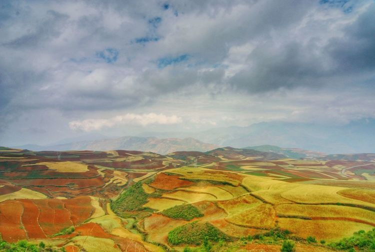 Yunnan China China Landscape Terraced Field Rice Paddy Rural Scene Multi Colored Cereal Plant Agriculture Patchwork Landscape Hill Tree Field Plowed Field Cultivated Land Cultivated Plantation Storm Cloud Agricultural Field Crop