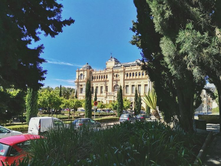 Málaga. Flowers Photo Mobilegraphy Huaweig8 Mobilegrapher Mobilephotography Mobileart Mobilephoto Huawei Photo Of The Day Color Photography Spain ✈️🇪🇸 Andalucía España🇪🇸 Streetphotography Malagacity Building Malaga Fresh On Eyeem