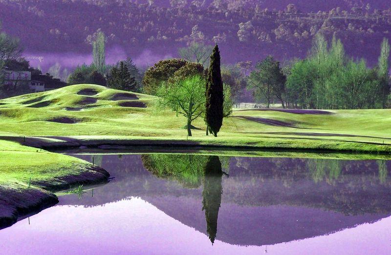 Bunker Cannes-Mandelieu Golf Golf Golf Course Green Tree Golf Club Lake Mirriorshot Outdor Water The Traveler - 2018 EyeEm Awards