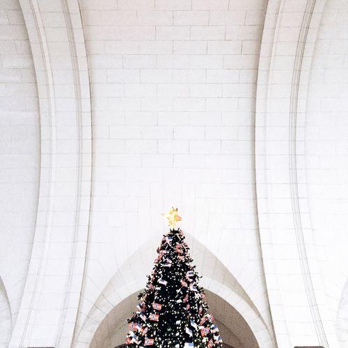 Christmas Tree WashingtonDC Union Station Eye4photography  Christmas