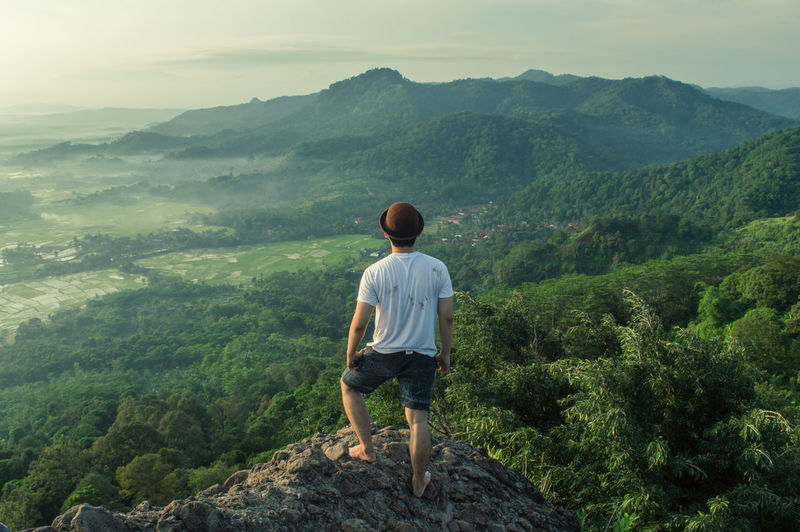 Rear view of man standing on rock looking at landscape