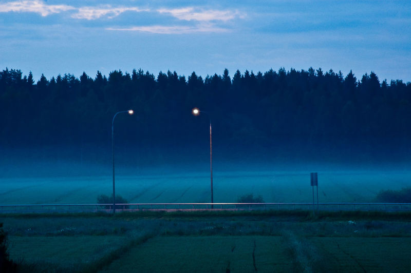 Illuminated street lights on field against trees during foggy weather at dusk