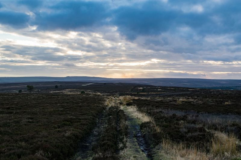 North Yorkshire Moors! North Yorkshire Moors Moor  Heather Walk Hike Biking Countryside Bracken Sky Sunset Clouds Fylingdales Rooftops And Chimney Pots Photography