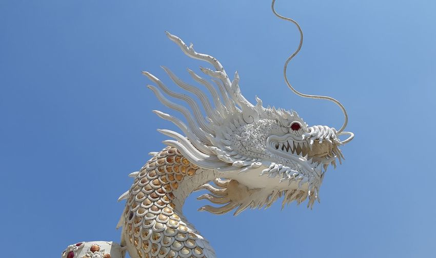 Low angle view of animal against blue sky