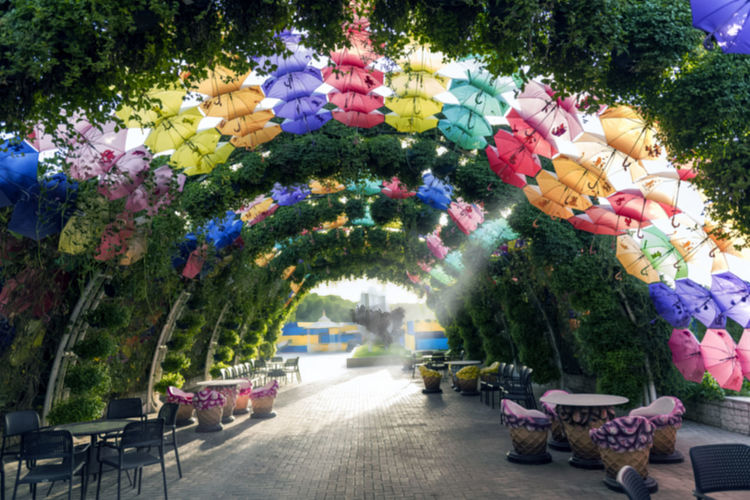 Architecture Beauty In Nature Celebration Day Decoration Direction Flower Flowering Plant Hanging In A Row Lighting Equipment Multi Colored Nature No People Outdoors Park Park - Man Made Space Plant Tree