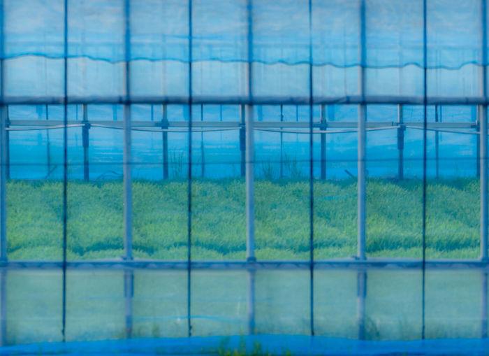 Full frame shot of swimming pool seen through window