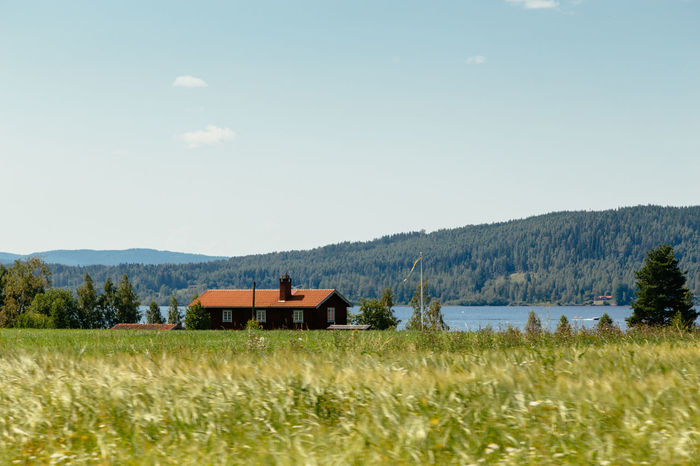 Tallberg, Sweden Beauty In Nature Dalarna Day Grass Growth Lake Lake View Landscape Mountain Mountain Range Nature No People Outdoors Rural Scene Scenics Sky Summer Sweden Swedish Swedish Nature Tranquil Scene Tranquility Tree Tällberg Water