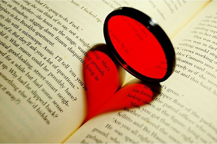 Filter Redfilter Novel Hardcover Conceptual Photography  Heart Redheart Backlighting