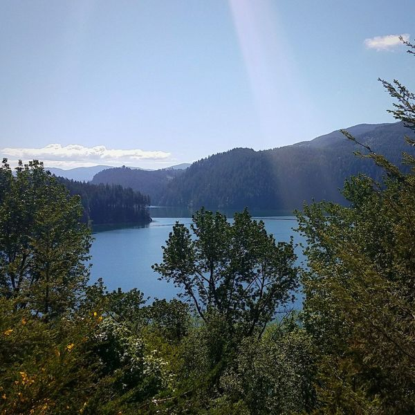 Tree Water Mountain Lake Forest Sky Landscape