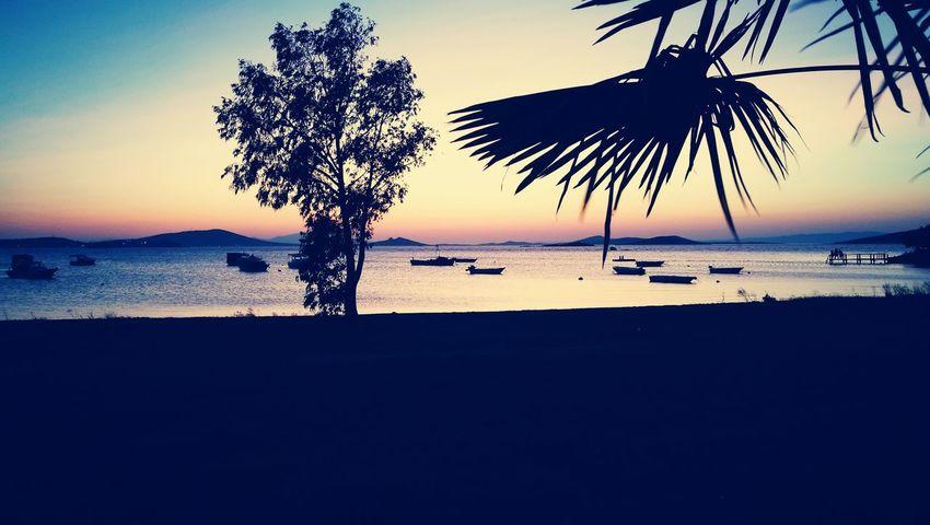 Beach Beauty In Nature Horizon Over Water Nature Tranquility Water Tranquil Scene Ayvalik 🐚🐳🐬🏊 Doga Günbatımı