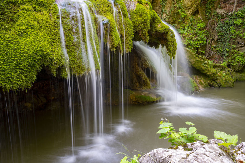 Bigar Waterfall Nature Romania Beauty In Nature Beauty In Nature Bigar Blurred Motion Falling Water Flowing Flowing Water Forest Landscape Long Exposure Motion Nature No People Outdoors Plant Rainforest River Scenics - Nature Tree Wallpaper Water Waterfall