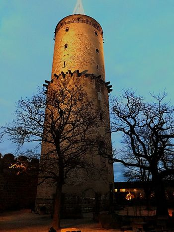 Historic Castle Germany🇩🇪 EyeEmNewHere Architecture Tower Built Structure Building Exterior No People Tree Sky Outdoors