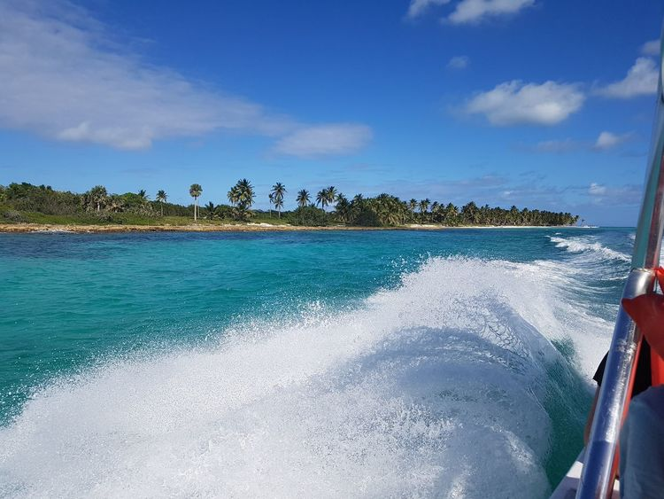 wow. with very strong motors along the caribbean coastline towards saona island paradise. ... Bugwelle Geschwindigkeit Race Racing Boat Race  Speed Blue Sky White Clouds Blue Sky And Clouds Seascape Happiness Good Mood Caribbean Life Caribbean Island Colourful EyeEm Selects Water Sea Beach Nautical Vessel Blue Sand Sky Horizon Over Water Coconut Island Coconut Palm Tree Caribbean My Best Travel Photo