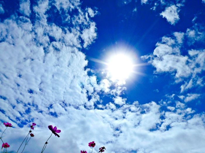 Low angle view of bright sun in sky