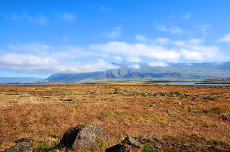 Iceland Beauty In Nature Blue Grass Landscape Mountain Mountain Range No People Outdoors Remote Sky Tranquil Scene