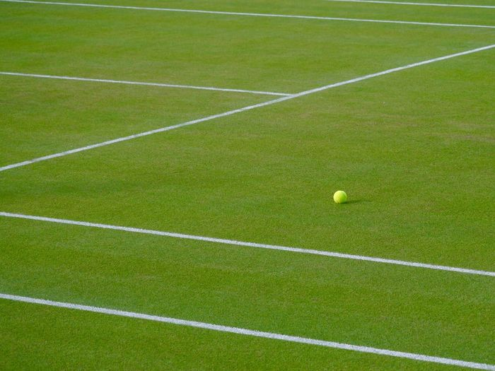 High angle view of tennis ball on grassy field