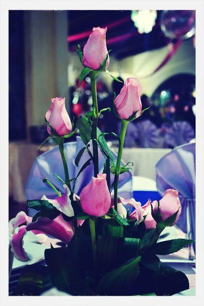 Flowers Rosas <3