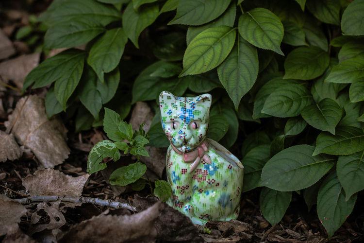 Juxtaposition VINTAGE CAT Vintage Style Animal Themes Cat Cat Vase Feline Feline Statue Green Color Leaf Outdoors Styled Photos