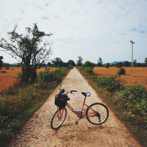 The mystical, vanishing bicycle path. Vanishing Point Four Thousand Islands Laos Country Living Open Spaces