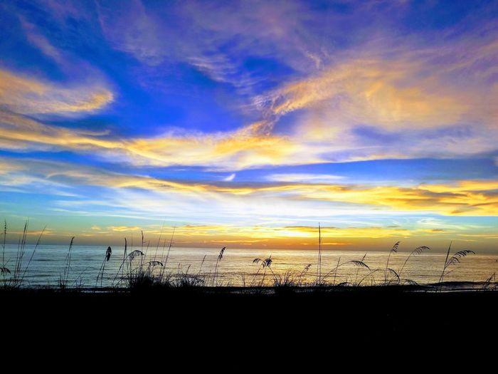 Belleairbeach Ocean Florida Unlocktampabay LoveFl Visitflorida Tampabay Instapassport Hiddentampa Igerstampa Pureflorida Lovetampa Sea Choosetampa Loveflorida