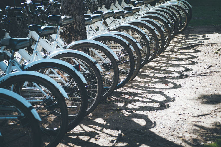 Bicycles parked in row outdoors