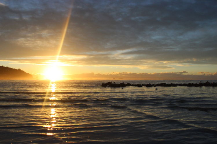 Sumner Beach, Christchurch, New Zealand. Beauty In Nature Horizon Over Water Love Our Oceans Nature No People Outdoors Scenics Sea Silhouette Sky Sun Sunlight Sunset Tranquil Scene Tranquility Water