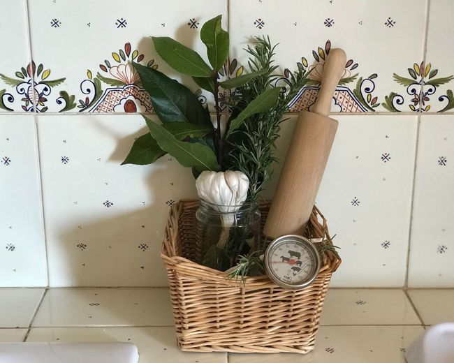 Herbs Nature Indoors  Flower Basket Container Flowering Plant Home Interior