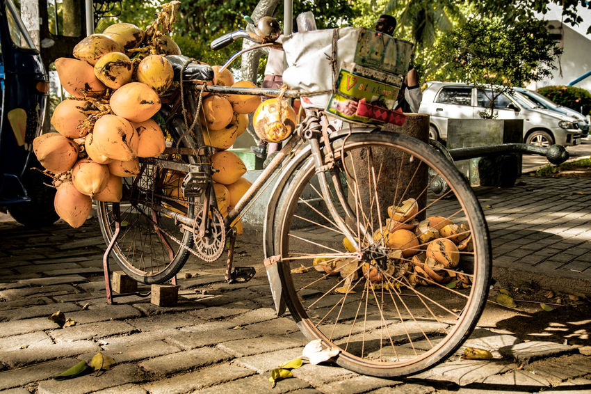 Fruit Basket Bicycle Bicycle Basket Cobblestone Day Exotic Fruits Fresh Fruit Fruit Seller Interaction Land Vehicle Mode Of Transport No People Outdoors PawPaw Real Life Rusty Bike Stationary Street Street Food Street Vendor Transportation Tree Tropical Wheel