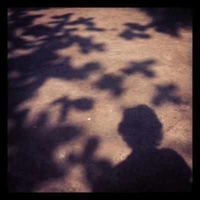 always there sunshine! two steps behind. Sunshine Light Shadow Home Yard Chaktai Chittagong