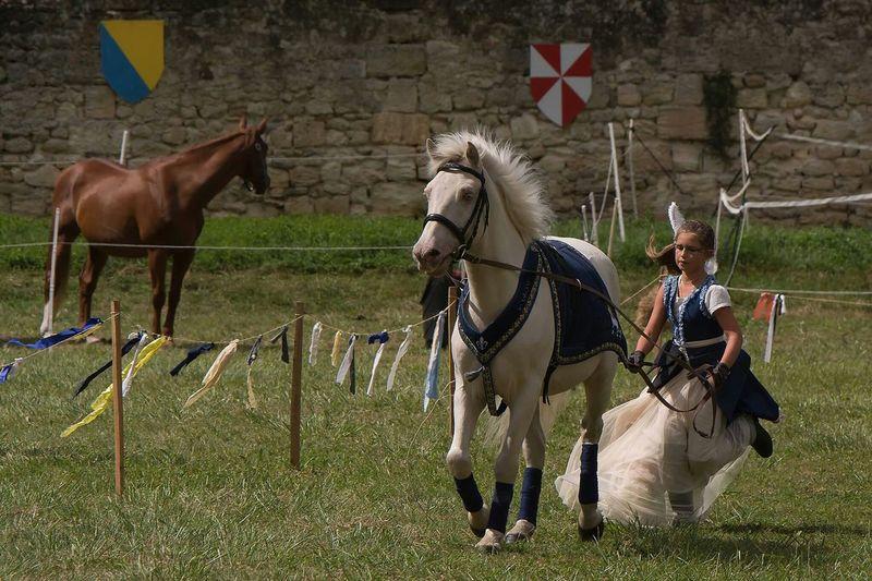 Medievale Moyen âge Middle Ages Cheval Horse Princesse Princess Autour De Chez Moi France Photo Around You