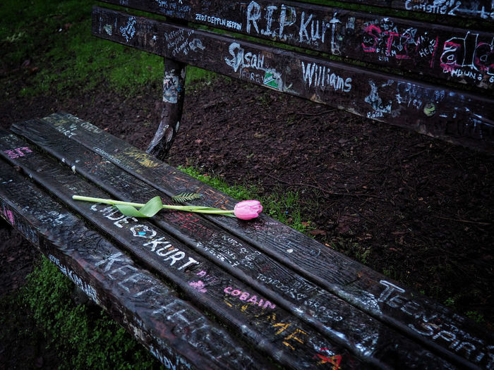 High angle view of text on pink bench in park