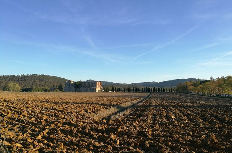 Lost In The Landscape Agriculture No People Business Finance And Industry Rural Scene Nature Outdoors Sky Day Low Angle View Sunset Dawn Sun Nature Landscape Beauty In Nature Architecture Wideangle Wide Shot Building Exterior Tuscany