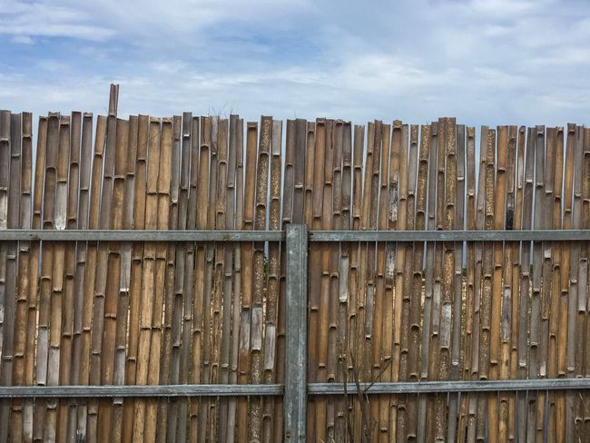 Wood - Material Sky Outdoors Cloud - Sky Day No People Low Angle View Close-up Nature