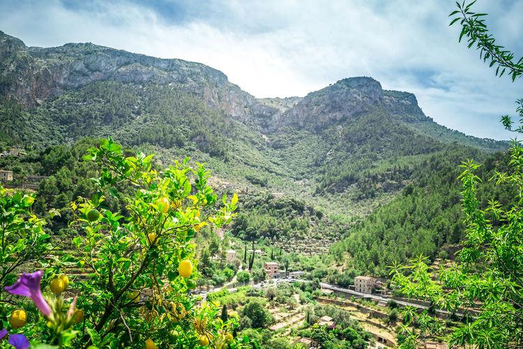 Heia Mallorca