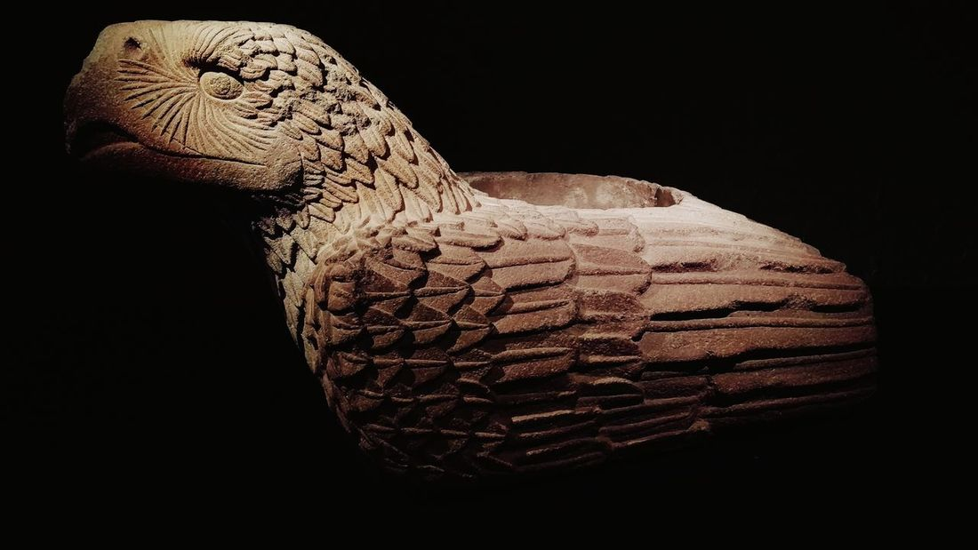This is a eagle, an sculpture made it by the aztecs hundreds years ago, it was founded in the main temple. Close-up No People Animal Eagle Sculpture Civilization Mexico Cdmx Aztecs Mexicans