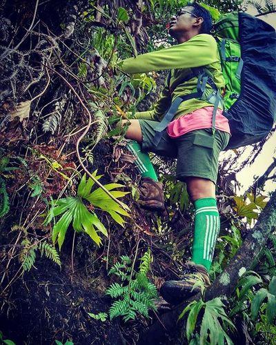 Rintangan . Akan selalu kita hadapi dalam setiap pendakian.. Begitu juga dalam episode kehidupan... Pilihannya hanya... MAJU terus untuk jadi PEJUANG yang MENANG... atau MUNDUR jadi PECUNDANG yang MALANG... . . Photograph by @sadikin_hamdani . Instagunung_ Instagunungindonesia Rintangandepanmataharusditempuhi Inspired Instinct Pendakigunung Mountainesia Id_pendaki Ceritapendaki Explorergunung Pendaki_indonesia Indosat_adventurer Mount_salak Gunungsalak Indonesiamountain Instagunung Anakgunung Anakgunung_