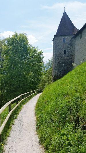 Ash Enjoying Life Castle Switzerland Suisse  Fribourg Gruyere Chateaux Promenade