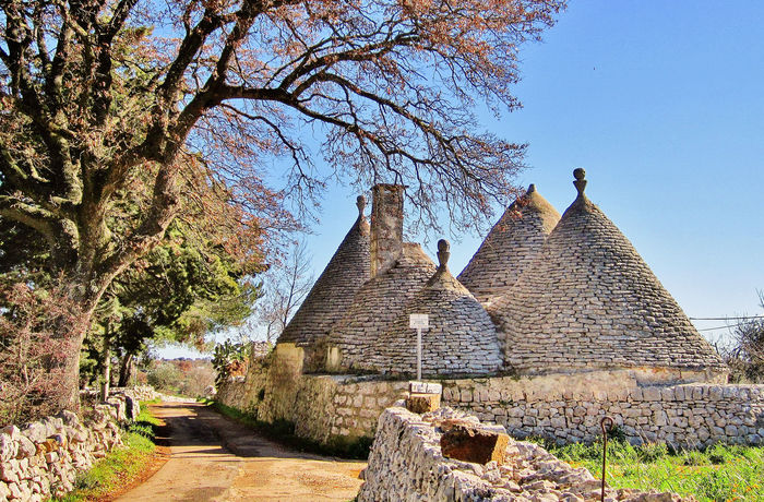 Landscape with trulli and dry stone wall in Puglia, Italy Ancient Holiday Puglia Rural Ancient Civilization Architecture Building Exterior Built Structure Countryside Day History Italy Nature Old Ruin Outdoors Spirituality Traditional Travel Destinations Tree Trulli Trullo Valle D'itria