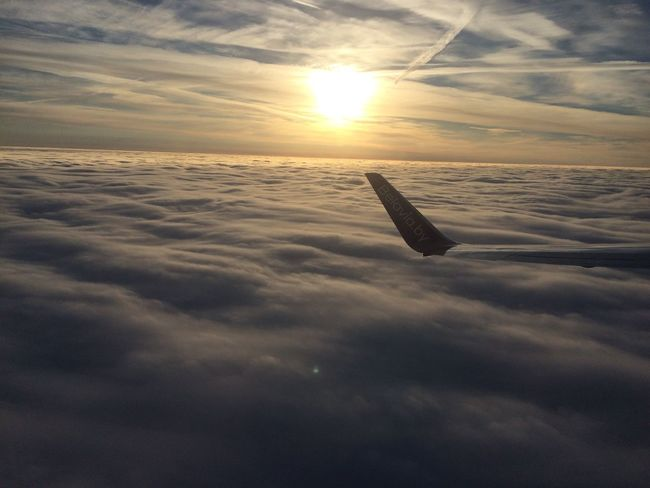 Traveling Home For The Holidays полет в Минск . самолет небо Airplane