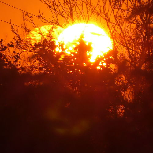 Fun-tastic two suns?🤔😄 we have one sun and one life🦄 Fireball Effect Through My Window Sunset Zoooom Into Sundown😍 View From My Window😍 Silhouette Power Of Nature Simple Beauty Beauty On My Doorstep You Raise Me Up✨ Untamed Heart Autuumbeauty🤗 My Soul's Language Is📷 For My Friends 😍😘🎁 Enjoying Life Golden October Enjoying The View