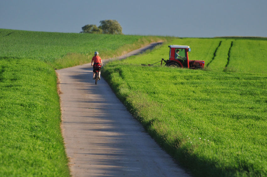 Agriculture Alone Beauty In Nature Bycicle Day Diagonal Lines Field Grass Green Color Landscape Leaves Nature One Person Orange Color Outdoors Real People Rear View Red Color Road Rural Scene Sport Tractor