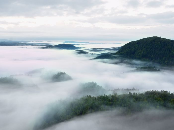 Heavy mist in landscape. magnificent autumn creamy fog in countryside. hill increased from fog