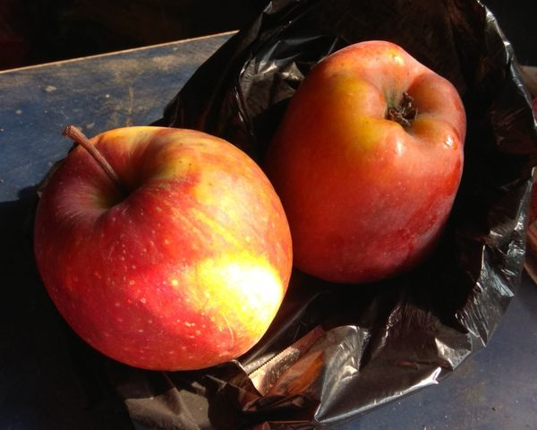 Fruit Healthy Eating Food And Drink Food Freshness Apple Red Color