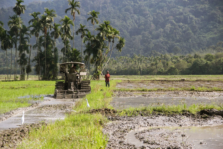 working with nature Agriculture Beauty In Nature Day Farmer Field Grass Growth Irrigation Equipment Landscape Mountain Nature Occupation Outdoors Palm Tree People Real People Rice Paddy Rural Scene Scenics Sky Tree Water Working