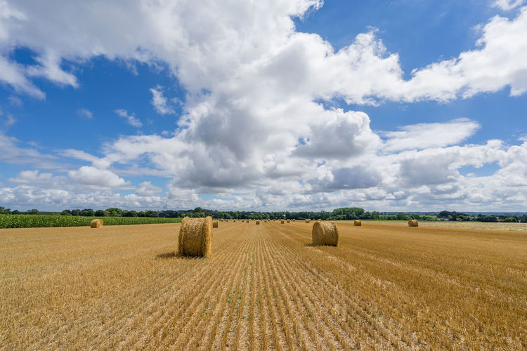 Agriculture Bale  Beauty In Nature Cloud - Sky Day Farm Field Hay Bail Hay Bale Hay Roll Landscape Nature No People Outdoors Rural Scene Scenics Sky Tranquil Scene Tranquility