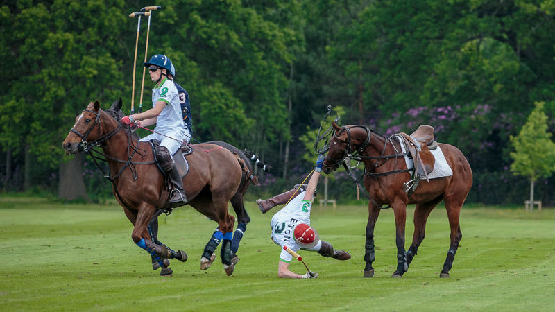 Whoops Animal Themes Enjoyment Falling Fun Funny Grass Horse Humorous Polo Recreational Pursuit Side View Standing Falling Down Active Lifestyle  Competitivesports Summer Team