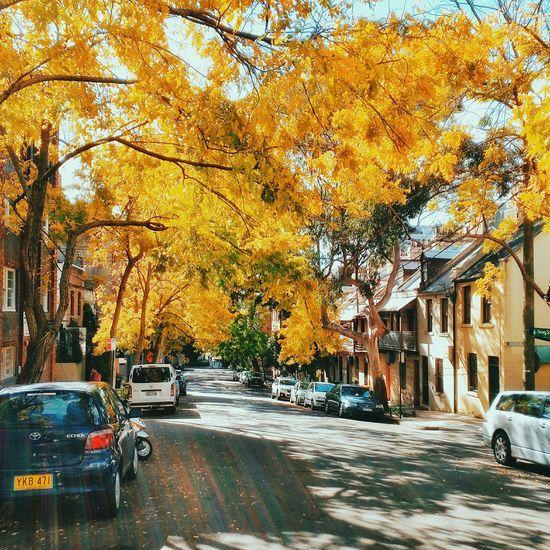 ♫ Breathe In Breathe Out, Mat Kearney Tadaa Community Urbanphotography Mobilephotography Vscocam EyeEm Best Shots EyeEm Best Edits Discover Your City City Urban Lifestyle