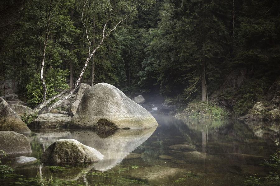 Fog in the Oker valley Brook Creek Fog GERMANY🇩🇪DEUTSCHERLAND@ Harz Haze Landscape Low Mountain Range Mountain Oker Okertal Outdoors Quiet Reflection Rocks Scenery Tranquil Scene Tranquility Trees Valley Water