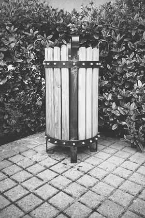 Bin Black And White Wood - Material Wood Leaves Creative Photography Taking Photos Check This Out Lines Showcase April Mobile Photography Sony Mobile This Week On Eyeem Our Best Pics EyeEm Best Shots From My Point Of View Eye4photography  Getting Inspired EyeEm Masterclass Deceptively Simple Learn & Shoot: Simplicity Walking Around B&w Black & White XperiaM5