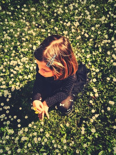 High angle view of woman with flowers